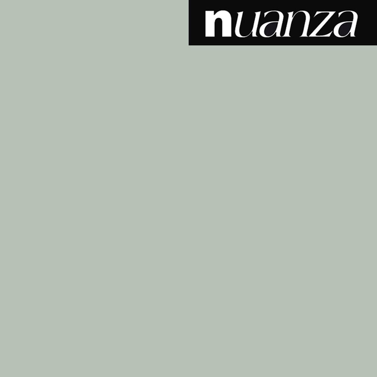Peinture vert de gris satin monocouche Nuanza