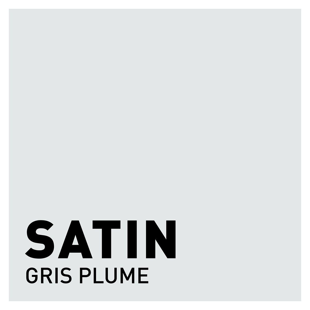 Peinture gris plume satin 20 minutes chrono Renaulac 1l