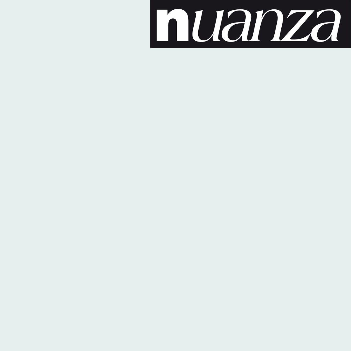 Peinture Nuanza satin monocouche nuage 2.5l