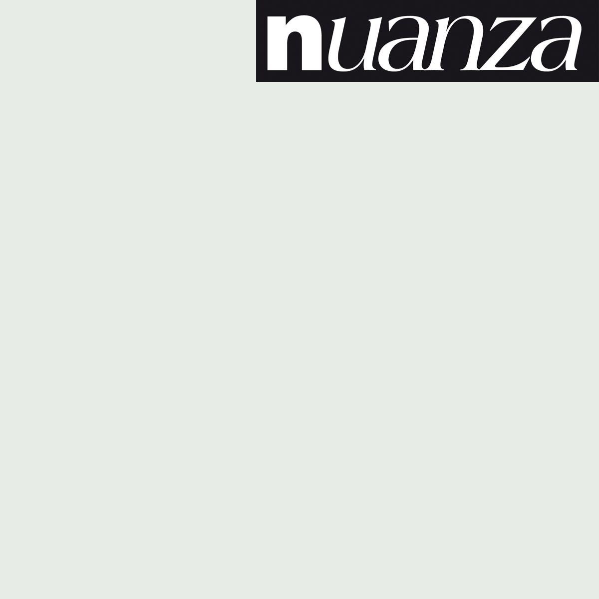 Peinture Nuanza satin givre 2.5l